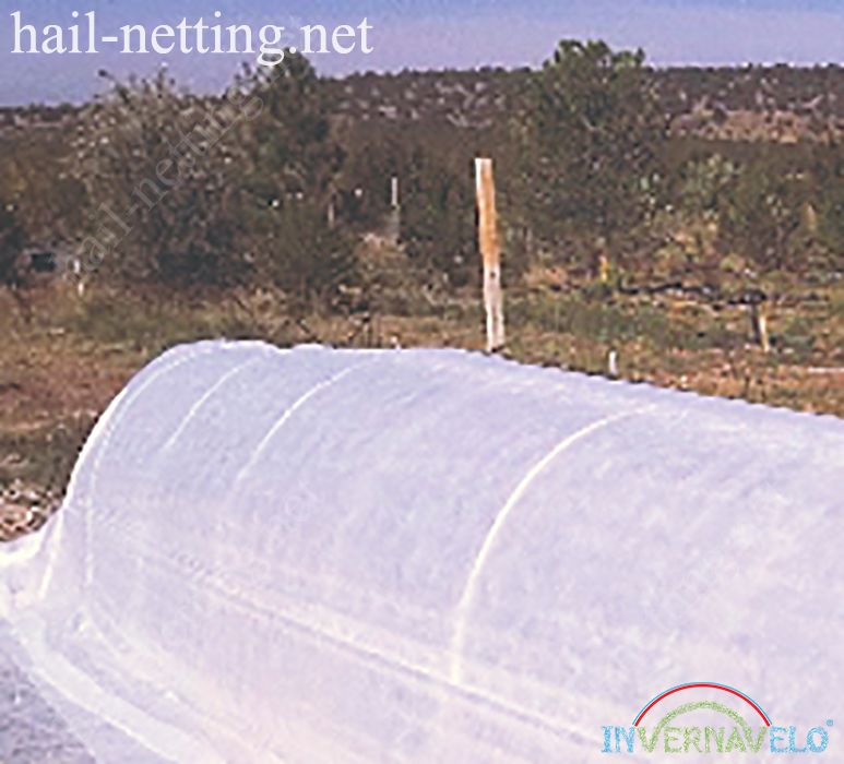 Micro tunel invernavelo for protection of crops of external damage.